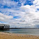 Busselton Jetty  by Coralie Plozza