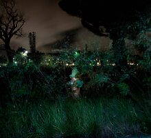 Night Fire Hydrant by Jacki Campany