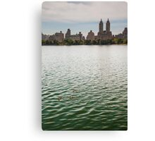 Ducks on the Water Canvas Print