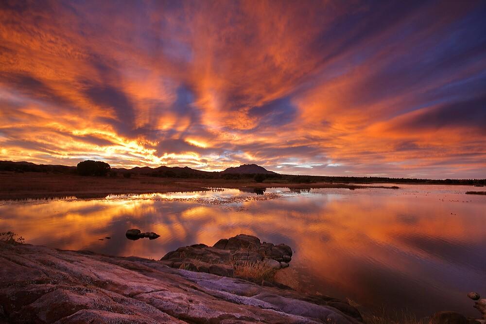 Wet Burn by Bob Larson