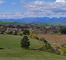 Homes and Hops farm, Glenora, Tasmania, Australia by Margaret  Hyde