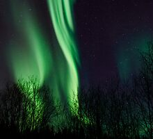 Aurora Steam by peaceofthenorth