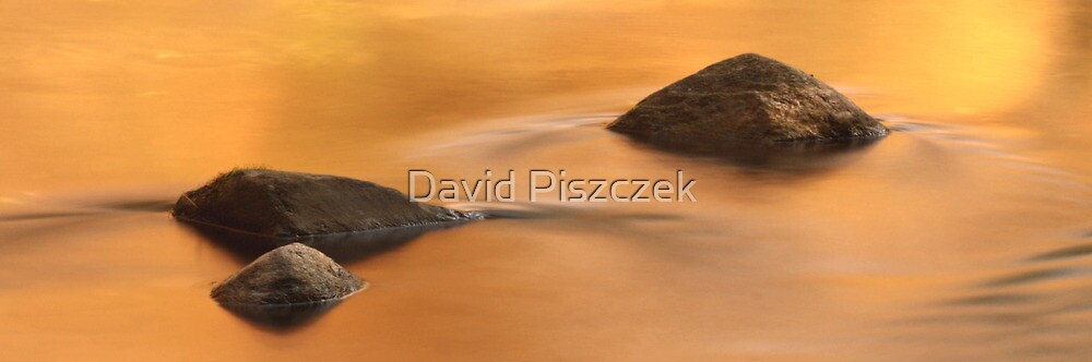 Fall Reflection On River by David Piszczek