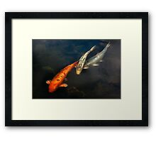Fish - Fishing for a compliment  Framed Print