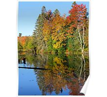 Autumn Tree Reflections Poster