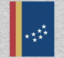 Durham North Carolina Flag by cadellin