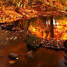 Simplicity Of Fall by David Piszczek