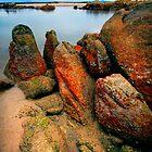 Deep Creek, Tasmania by Angelika  Vogel