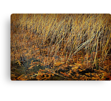 Gold Rushes and Oak Leaves Flow Canvas Print