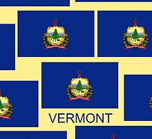 Smartphone Case - State Flag of Vermont VII by Mark Podger