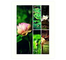 Pamplemousses Garden Collage Art Print