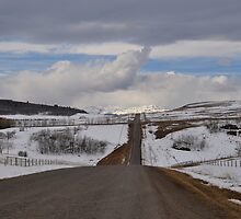 Road to Winter Heaven  by Judy Grant