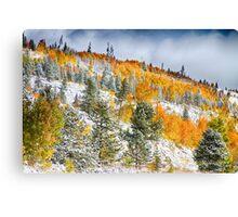 Colorado Rocky Mountain Snowy Autumn Colors Canvas Print