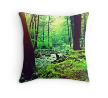 Peoples State Forest Riverton CT Throw Pillow