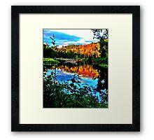 Afternoon sun Framed Print