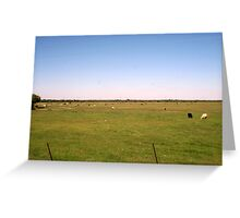 Texas T Bone Greeting Card