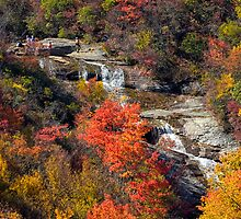 Falls at Grave Yard Ridge in Fall Colors by PaulWilkinson