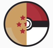 PokeDragonBall Kids Clothes