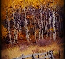 Gate to Gold by WishesandWhims
