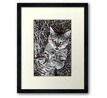 Badass Cat Framed Print
