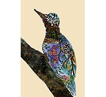 The Woodpecker Photographic Print