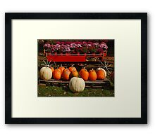 Mature Harvest Framed Print