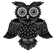 Owl 1 by Kyle Wood