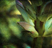 Shades of Green by Ellen Cotton