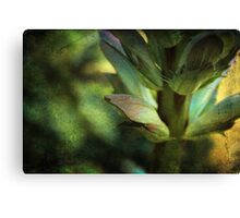 Shades of Green Canvas Print