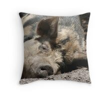 Porky Takes A Nap Throw Pillow