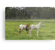 Are you sure we have the same dad? Metal Print