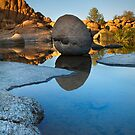 WaterBall by Bob Larson