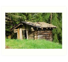 Derelict Wooden Mountain Shack Art Print
