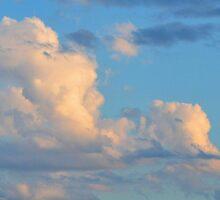 Cloud Nine by Sally Murray