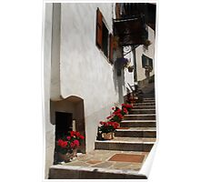 Geraniums on Stepped Street 1 Poster