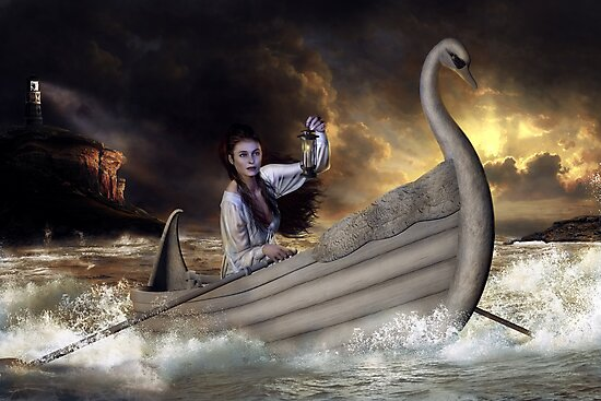Safe Harbor by Shanina Conway
