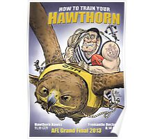 How To Train Your Hawthorn Poster