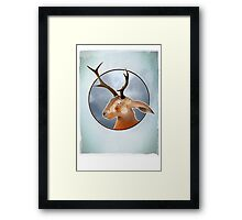 The Mythical Jackalope - Folk Lore ? Framed Print