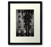 Desirable Property Framed Print