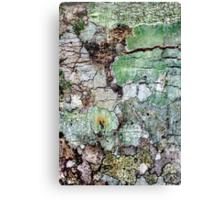 The Land of Nod Canvas Print