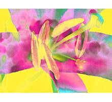 Lily Macro. Digital Watercolor Painting. Photographic Print
