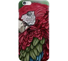 red parrot iPhone Case/Skin