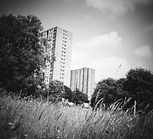 Sighthill 2 by dkonn