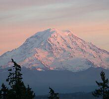 Mount Rainier At Sunset by Dave Davis