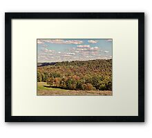 Turning Trees Framed Print