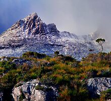 Lake Dove Cradle Mountain by Angelika  Vogel
