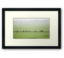 Birds on a Wire (2013) Framed Print