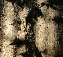 greenhouse wet shadows by rysunki-malunki