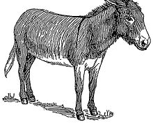 Mule Sketch by kwg2200