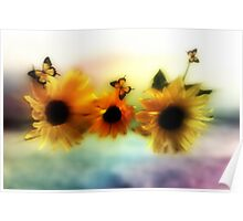 Sunflowers in harmony  Poster